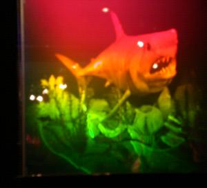 圖二:科博館科學中心地下一樓的全像片展示區中的鯊魚主題全像片。注意其顏色為由上而下,由紅橙到綠紫。